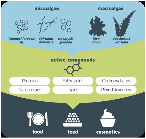 biosea objectives